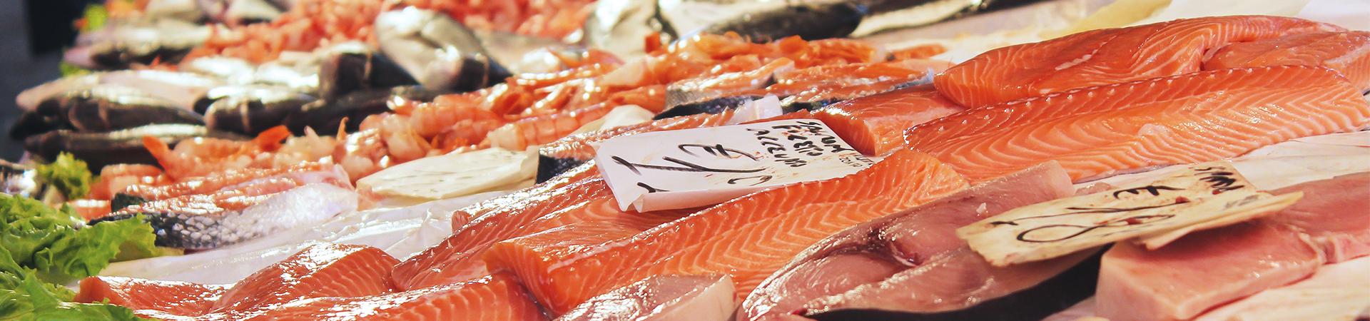 Vishandel van Nunen Home page banner